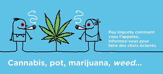 Prévention Cannabis